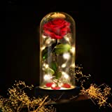 Deluxsa Enchanted Red Silk Rose,Beauty and the Beast Rose with Fallen Petals in A Light Dome,Home/Office or Home Decorations,
