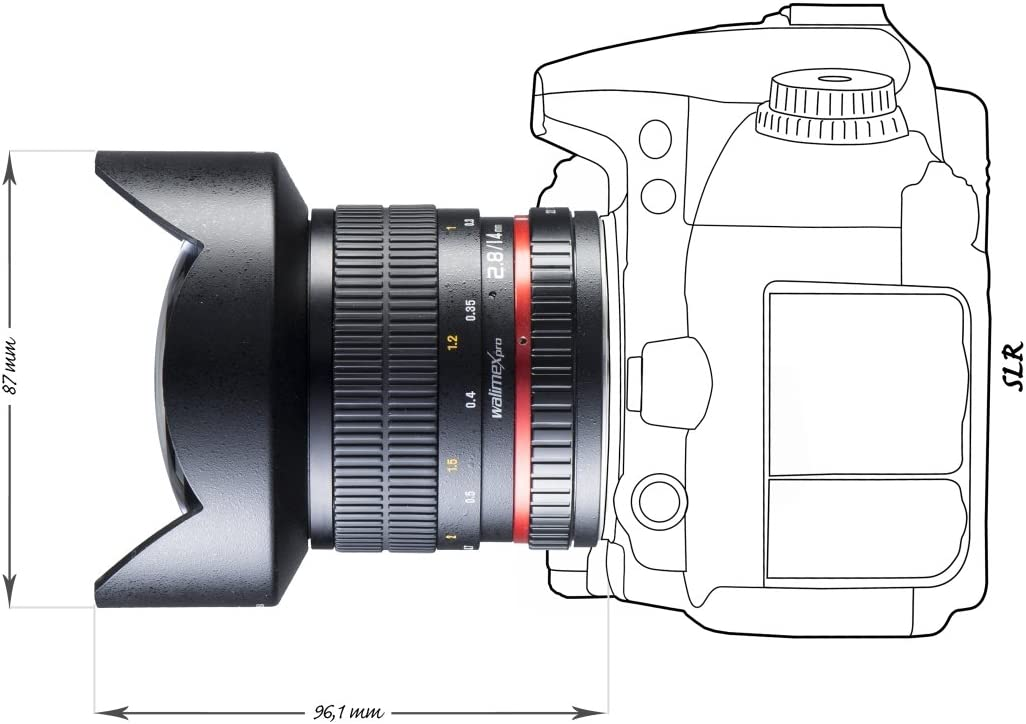 Walimex Pro 14 mm F/2.8 IF - Objetivo para cámara réflex Canon AF ...