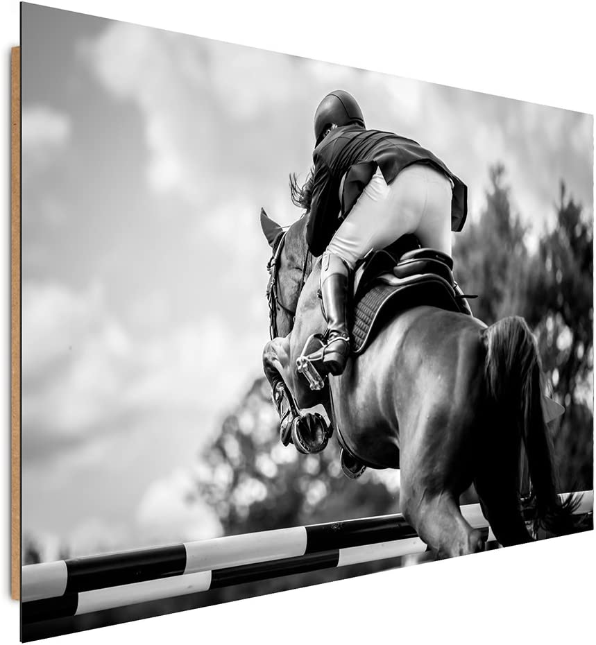 Feeby Frames, Cuadro de pared, Cuadro decorativo, Cuadro impreso, Cuadro Deco Panel, 40x50 cm, CABALLO, JINETE, BLANCO Y NEGRO