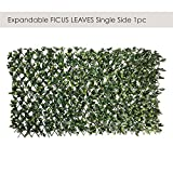 Ecoopts Artificial Ficus Leaf Faux Ivy Expandable/Stretchable Privacy Fence Screen, Single Side Leaves and Vine Decoration for Outdoor, Garden, Yard 1 Pack