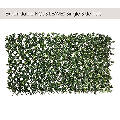 (Ecoopts Artificial Ficus Leaf Faux Ivy Expandable/Stretchable Privacy Fence Screen, Single Side Leaves and Vine Decoration for Outdoor, Garden, Yard)
