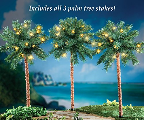 Outdoor Lighted Palm Tree With Coconuts - 1