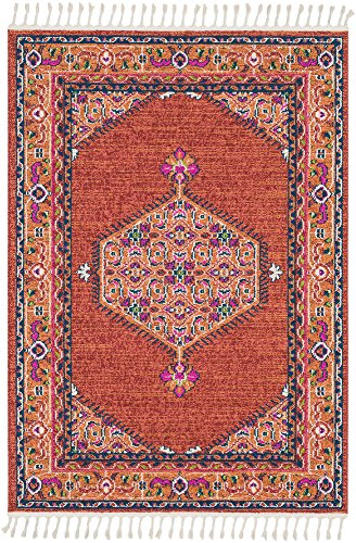 Lawson Brick and Coral Updated Traditional Area Rug 3'11