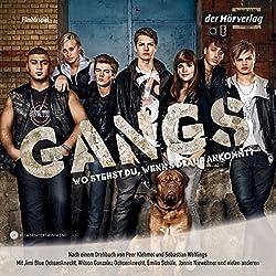 Gangs (Filmhörspiel)