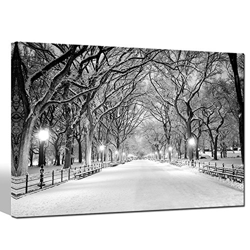 Sea Charm - Winter Canvas Wall Art Peaceful Landscape Painting New York Central Park Picture Printed on Canvas Modern Home Decoration,Framed Canvas Art Ready to Hang,-24