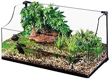 Exo Terra Turtle Terrarium Large 90 X 45 X 30 45 Cm Amazon Co Uk