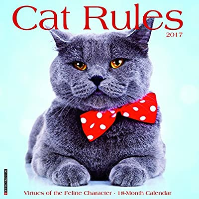 2017 Cat Rules Wall Calendar