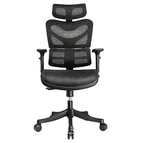 Amazon.com: Argomax Mesh ergonomic Office Chair (EM-EC002 ...