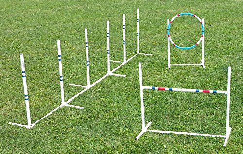 Agility Weave Poles (Affordable Agility Dog Agility Essentials Set)