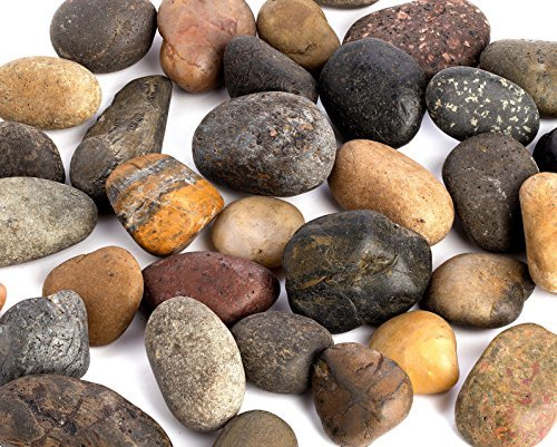 Supply Guru SG2584 River Rocks, Pebbles, Outdoor Decorative Stones, Natural Gravel, For Aquariums, Landscaping, Vase Fillers, Succulent, Tillandsia, Cactus pot, Terrarium Plants, 2 LB. Large Size. by Supply Guru