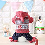 ZPP-Pet clothing new yarn for fall/winter small four-foot yitaidi pet dog cat with Hat,,Red,L