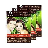 Hair Dyeing Shampoo Natural Herb No Ammonia Poompuksa Color CHESTNUT RED BROWN 3 pcs.