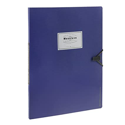 Deli sheet protector booklet blue.