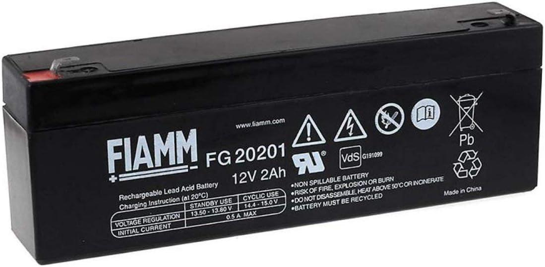 FIAMM Batería de Plomo-ácido FG20201 Vds