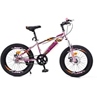 "Geekay 20"" Kids Bicycle for BoysGirls 