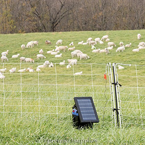 Premier Solar IntelliShock 60 Fence Energizer Kit - Includes 5-Light Wireless Fence Tester by Premier 1 Supplies