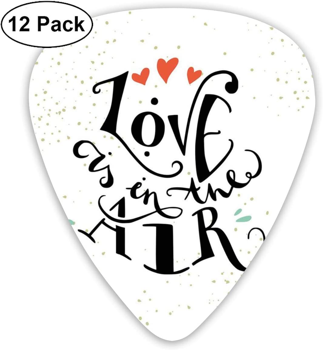Guitar Picks 12-Pack,Love Is In The Air Hand Lettering ...