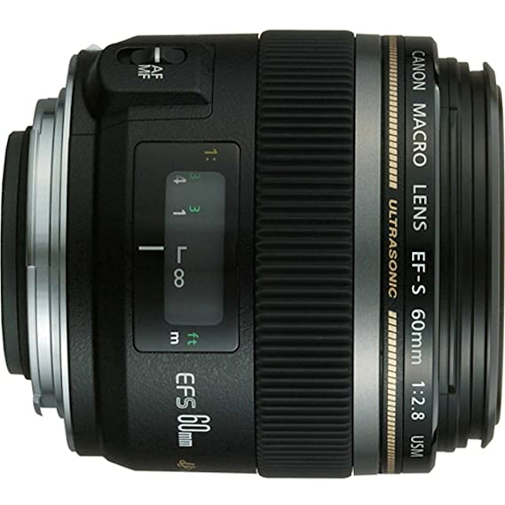 Review Canon EF-S 60mm f/2.8