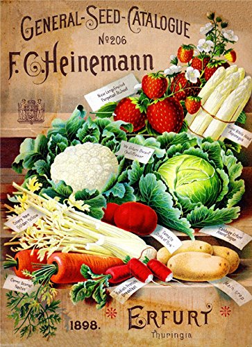 (A SLICE IN TIME 1898 Heinemann Vegetable Vintage Seed Packet Catalogue Travel Advertisement Poster)