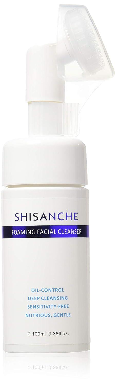 Amazon.com: SHISANCHE Limpiador facial de espuma – Control ...