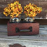 These are absolutely adorable distressed Drawers that come with 2 Ball Canning Pint Jars, and 1 metal handle! The 2 jar drawer comes with the ball canning pint jars.The flowers are NOT included. **Add candles, potpourri, pencils, towels, mail...