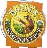 Badger Sore Joint Rub - 2oz