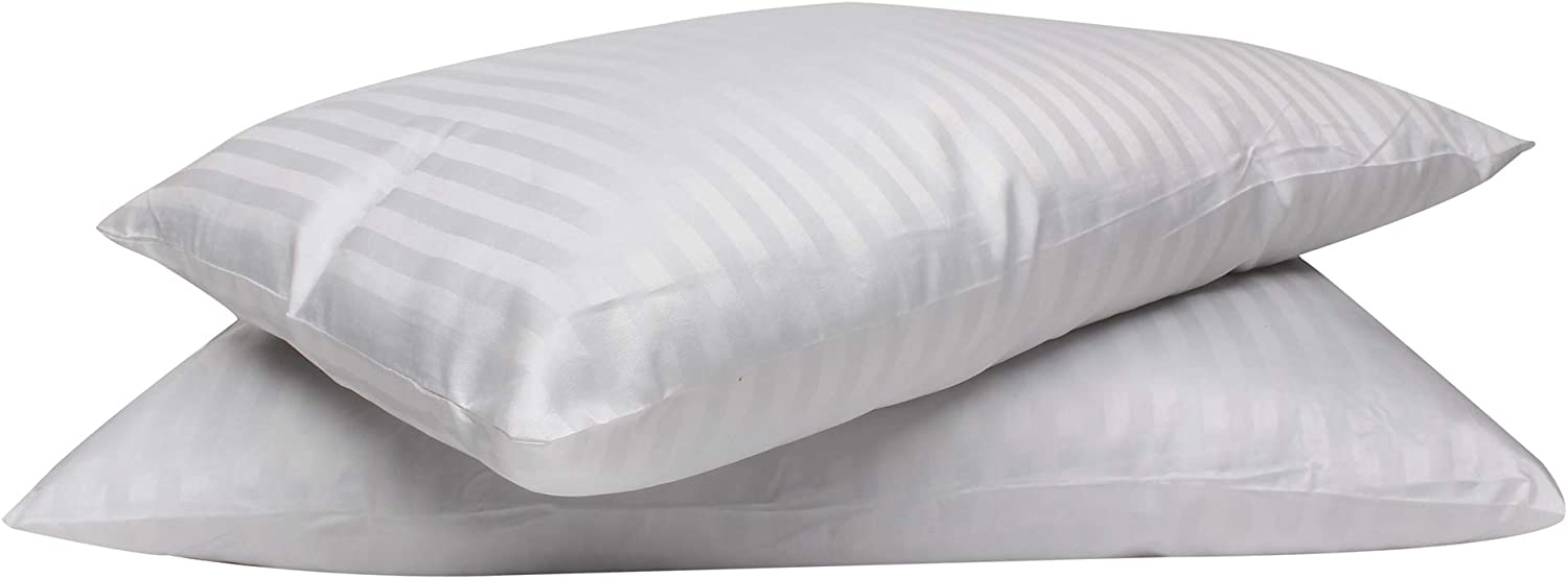Bless International Luxury Home and Hotel Collection Pillow Set of 2 - Standard White