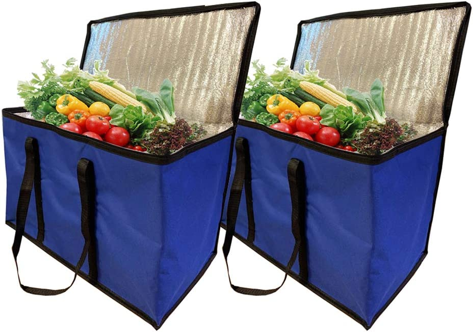 Insulated Food Delivery Bag,(2 Pack, Blue),Large Picnic Cooler Bag,Carry Zipper,Large Size,Suitable for Car Trunk