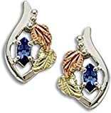 Landstroms Sterling Black Hills Silver Tanzanite Earrings - ER1778SS-455