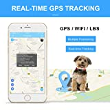 BARTUN Pet GPS Tracker, Real-Time Tracking Collar