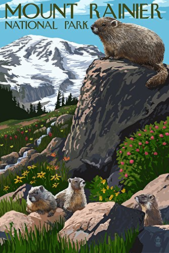Mount Rainier National Park - Marmots (12x18 Art Print, Wall Decor Travel Poster)