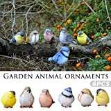 Autumn Water 6Pcs Resin Artware Decoration Small Bird Decoration Garden Animal Ornaments