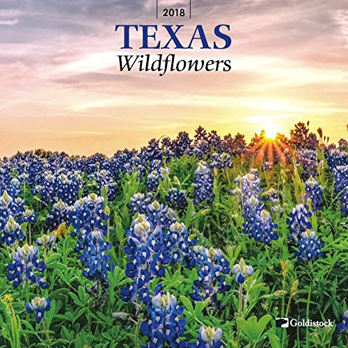 "Goldistock ""Texas Wildflowers"" Eco-friendly 2018 Wall Calendar - 12"" x 24"" (Open) - Thick & Sturdy Paper - Explosion of Color Texas Style"