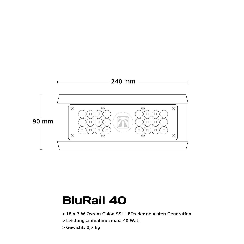 /2/0/2/m Gurtband EN 354/und EN 795/2/m x 25/mm SKYLOTEC l-0008/