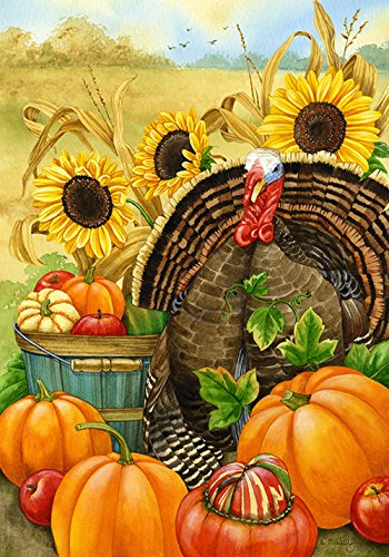 Toland Home Garden Hello Turkey 12.5 x 18 Inch Decorative Thanksgiving Harvest Fall Autumn Pumpkin Garden Flag]()