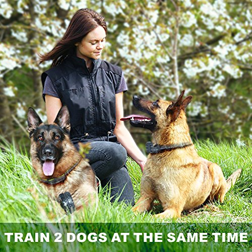 FunniPets Dog Training Collar for 2 Dogs, 2600ft Range Dog Shock Collar with Remote Waterproof Electronic Dog Collar for Medium and Large Breed Dogs with 4 Training Modes Light Shock Vibration Beep