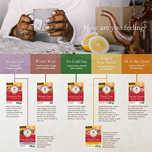 Traditional Medicinals Organic Seasonal Tea Sampler Variety Pack, 16 Tea Bags (Pack of 1) - incensecentral.us