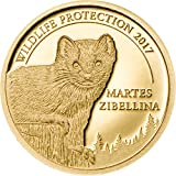 Wildlife Protection SABLE 24K GOLD PROOF COIN - 1/2 Gram 11mm 1000 Togrog - 2017 Mongolia - Martes Zibellina