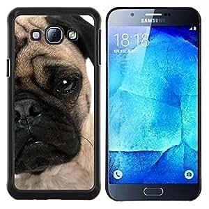 YiPhone /// Prima de resorte delgada de la cubierta del caso de Shell Armor - Pug Cachorro Cara arrugada ojo perro Hocico - Samsung Galaxy A8 A8000