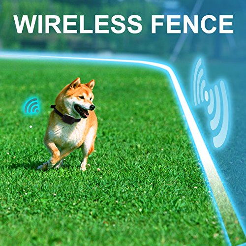 Amazon.com: FunAce Wireless Pet Fence Containment System (Invisible, Water  Resistant, Rechargeable)   1 Dog System: Pet Supplies