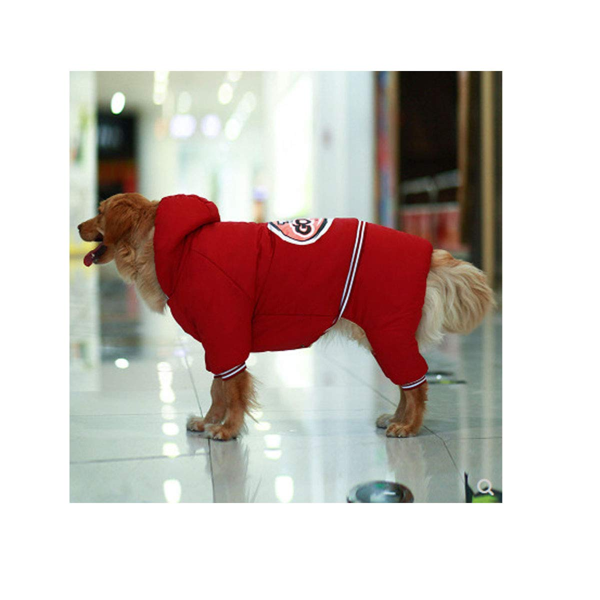Red 4xl Red 4xl Kuqiqi Dog Clothes, Autumn And Winter Clothes Than Bear golden Hair Dubin Labrador Husky In The Big Dog Type Thick Four-leg Cotton Coat (color   Red, Size   4xl)