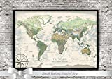 World Map Push Pin - The Nautilus World Map - 24x18 inch framed map - Created by a Professional Geographer