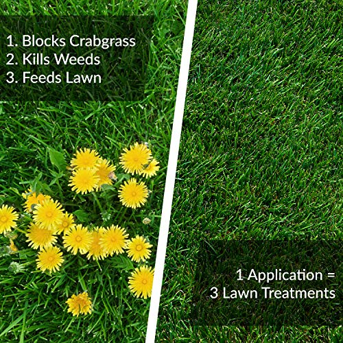 Buy lawn treatment for weeds