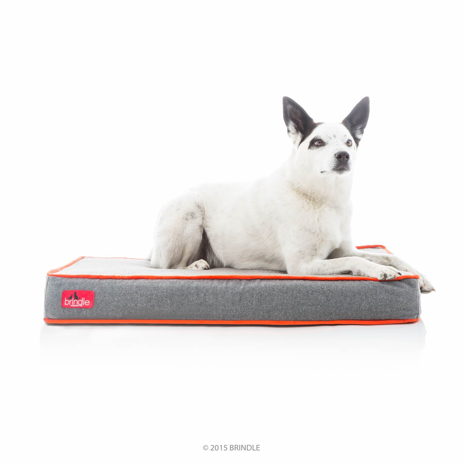 Brindle Waterproof Designer Memory Foam Pet Bed - Charcoal Velour