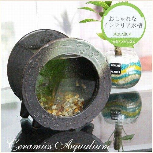 信楽焼 水槽丸型ミニ(茶色) 水槽 砂利セット すいそう スイソウ 陶器  金魚鉢 水鉢 陶器 su-0210 (茶色) B01N4HFWM3  茶色