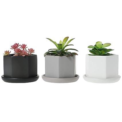 Amazon.com: Maceta de cerámica con bandeja para suculentos ...