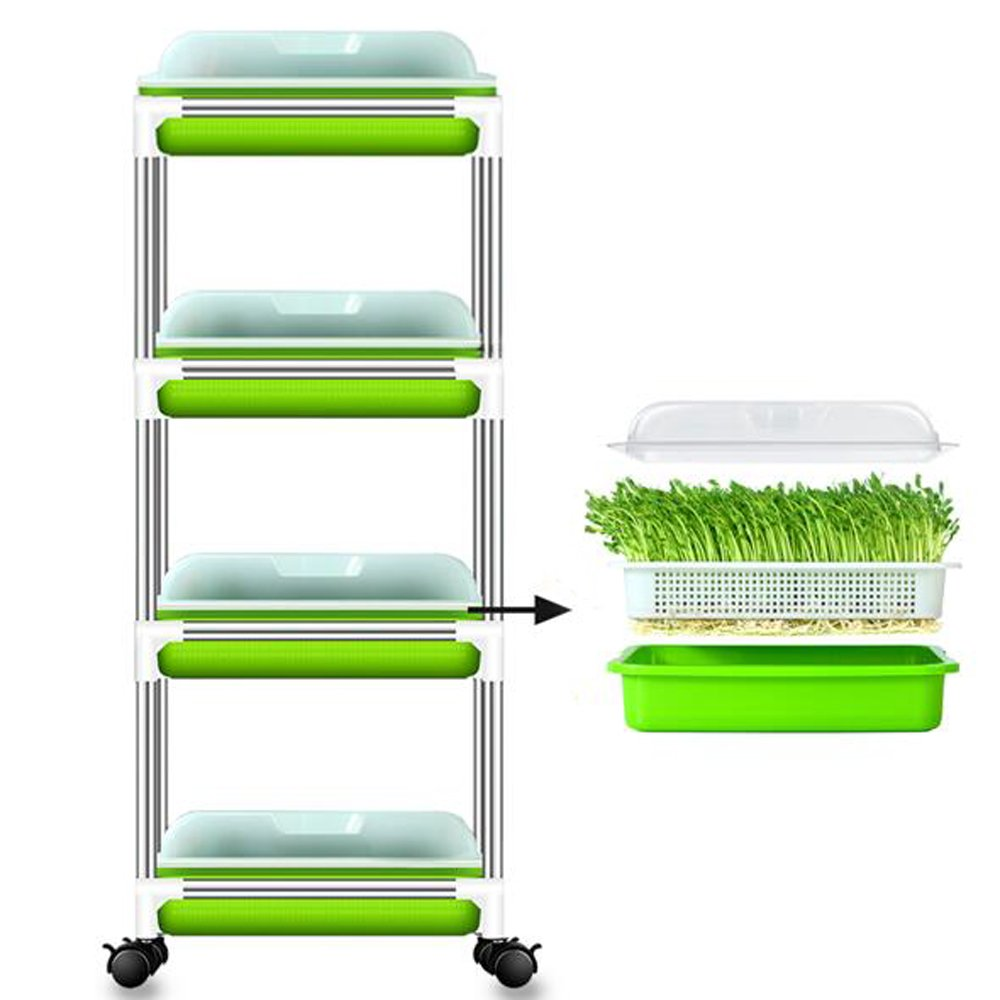 4 Layers Sprouter Trays with Cover & Stainless Steel Frame Soil-Free Healthy Wheatgrass Seeds Grower & Storage Trays for Garden Home Office by LeJoy