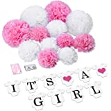 It's a Girl Decorations,Konsait It is a Girl Bunting Banners and Tissue Paper Flower Pom Poms Pink/White (12pcs) Party Decoration Accessory for Baby Shower Birthday Party Room Nursery Decoration