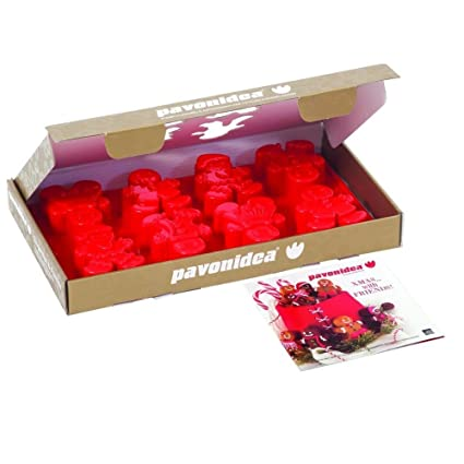 Pavoni Italia - Molde para repostería, diseño de galletas de jengibre: Amazon.es: Hogar