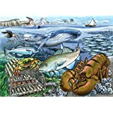 Life in the Atlantic Ocean - 35 piece tray puzzle